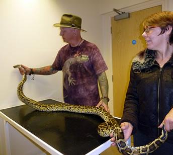 Exotic Pet Rescue Devon - Exotic Animal Rescue - Exotic Pet
